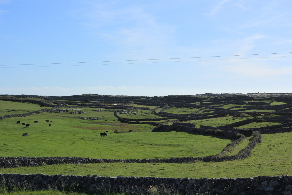 Inishmore, Aran Islands, Ireland - Kaptain Kenny Travel