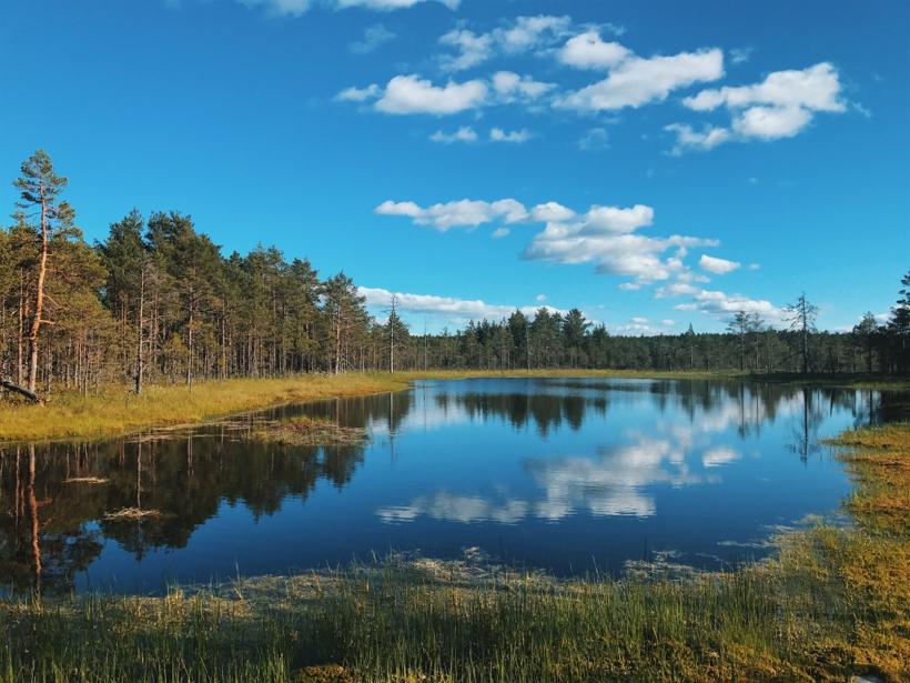 Lahemaa National Park in Estonia