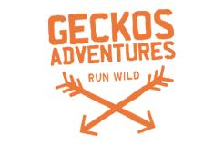 Geckos Adventures