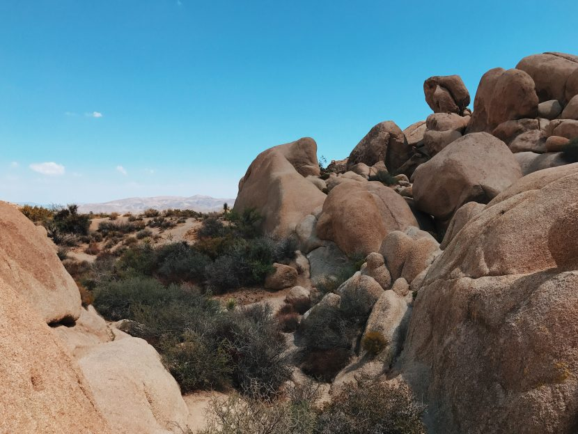 Skull Rock region - Joshua Tree National Park
