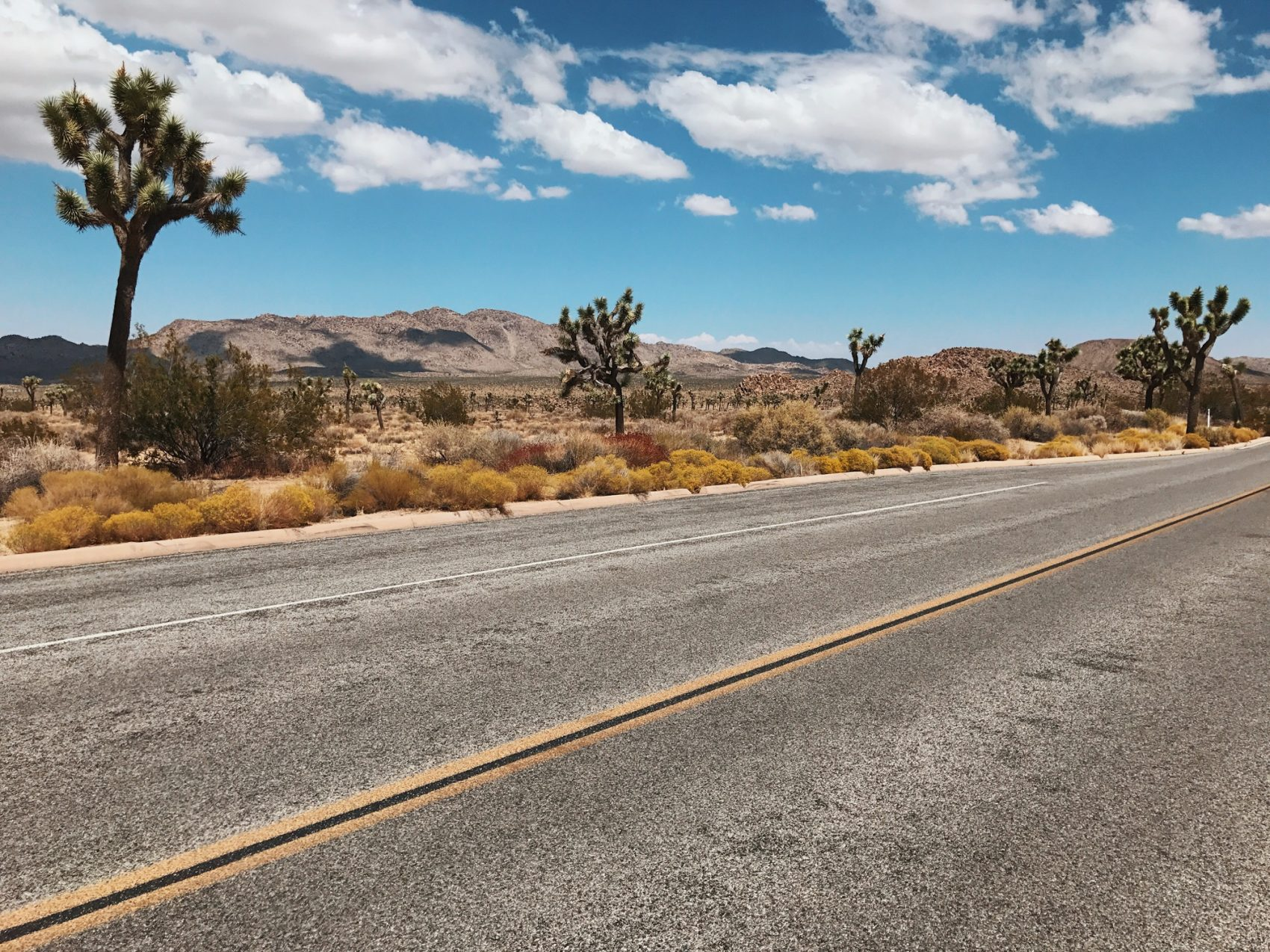USA road trip, desert road trip, road trip itinerary, USA travel, travel ideas, joshua trees
