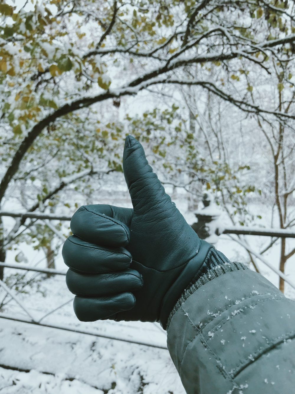 A thumbs up in green leather gloves with snow in the background