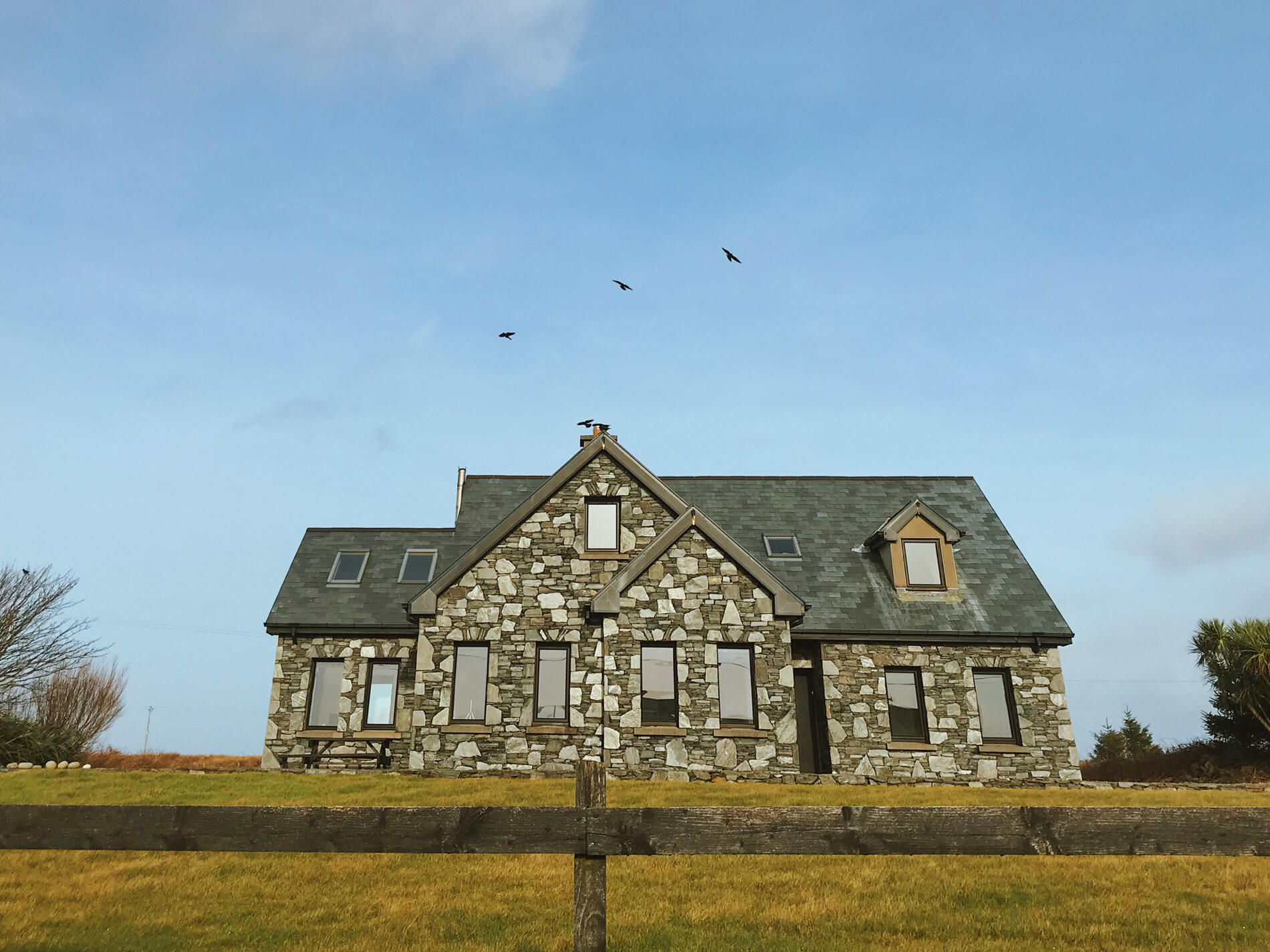 A flock of birds above an Irish cottage in Claddaghduff